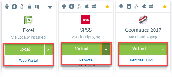 Screenshot of different launch options such as local and virtual